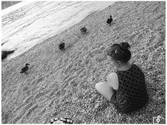 SAM_6681 (Johannes Haupt) Tags: italien lagodegarda malcesine dugs sea ducks duck ente stone lake see