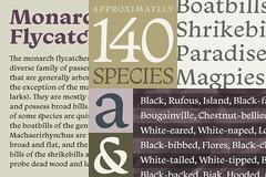 Tipografia Monarcha (Érico Lebedenco) Tags: adg brasil 10ª bienal design gráfico graphic typeface tipografia typography serif serifa text texto editorial isacotype font retail varejo br monarcha