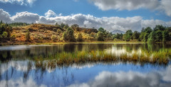 Days of summer..... (Einir Wyn Leigh) Tags: landscape lake british uk mirror reflections clouds blue wales cymru trees mountains rural light happy fun sunlight green water nature summer