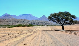 Damaraland region - travelling north towards Etosha.