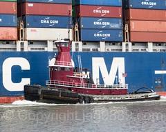 Joan Turecamo Tugboat with CMA CGM Nabucco Container Vessel on Kill van Kull, Bayonne, New Jersey (jag9889) Tags: 2017 20170508 bayonne boat cgm cma container gardenstate hudsoncounty killvankull marseille nj ny nyc newjersey newyork newyorkcity outdoor portrichmond richmondcounty river ship statenisland transportation tug tugboat turecamo usa unitedstates unitedstatesofamerica vessel water waterway workboat jag9889 us