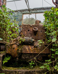Old Metal and New Growth Large (thanatosst) Tags: rust old green hawaii oahu hike explore oldnew machine abandoned