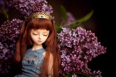 fairy queen (koroa) Tags: daydream dreaming coco bjd doll flowers crown feeriedollatelier