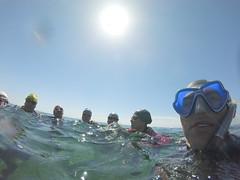 G0138125 (Visit Pilar de la Horadada) Tags: swimmers meeting point hibernismare swim natación nadar milpalmeras pilardelahoradada alicante costablanca vegabaja comunidadvalenciana quedada beach strand swimm