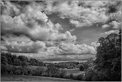 Henley sky