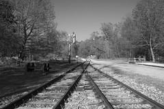 IMG_4523 hi (§imo) Tags: urbex urban decay abbadono abbandoned adventure avventura train treno trainstation binari binary vintage canon 1022 70d blackandwhite bn bw