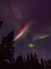 Steve - With Aurora (TofteTom) Tags: steve auroraborealis aurora northernlights northwoods nightscapes nightsky minnesota sawbilltrail temperanceriver superiornationalforest space