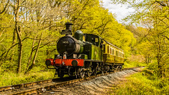 A Quick Turn Around (williamrandle) Tags: steam trimpleyreservoir bewdley worcestershire uk england spring 2017 severnvalley severnvalleyrailway tracks woodlands trees green landscape outdoor sunshine heritage train nikon d7100 tamton2470f28vc railroad locomotive