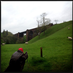 Lune Viaduct (Fotorob) Tags: verenigdkoninkrijk engeland lowydc victorian spoorbrug cumbria wegenwaterbouwkwerken land weide brug heuvels erringtonjohn lockejoseph architecture stijl england margit architectura architectuur firbank