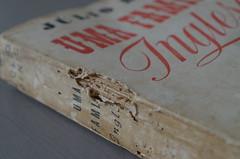 Uma família Inglesa, Júlio Dinis (Rui Type Abreu) Tags: júlio dinis book novel slab serif english portuguese literature bold typeface egiptian reversecontrast script