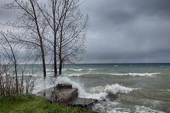 Angry Lake (gabi-h) Tags: lakeontario waves highwater trees well stormy rain gabih princeedwardcounty blue white flooding beach crashingwaves surf spring