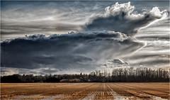 the sky! the sky! (josefontheroad) Tags: bestcapturesao elitegalleryaoi bestcapturesaoi