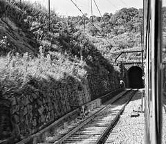 The train to Jundiaí - São Paulo. (vieira.de.carvalho) Tags: bw train tunnel railway nikomat ft2 rolleiretro80s d76 d76110 dts1030ai
