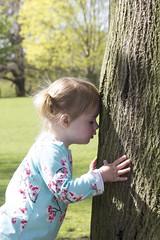Tree Hugger (Charliebubbles) Tags: canoneos60d esme granddaughter family tamron18270mm nationaltrust dunhammassey photoshopcc 2017 portrait