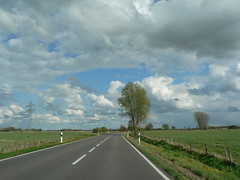 on the road in Rheiderland (achatphoenix) Tags: tree road street rheiderland roadtrip enroute enpassant strase springtime spring sky ciel cielo clouds nuages whiledriving eastfrisia frühling printemps lente