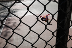 playing alone (spanaut) Tags: somerville massachusetts unitedstates us parenting playground tricycle toy abandoned basketball court
