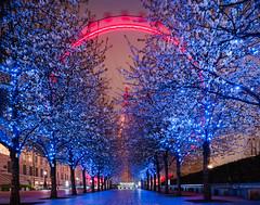 London Eye (Calvin J.) Tags: londoneye london england ferriswheel longphotography landscape canon 5dmarkiii tse24mmf35lii vsco southbank nightphotography