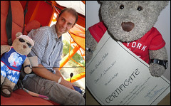 I passed wiv flyin' colours! (pefkosmad) Tags: tedricstudmuffin teddy bear ted cute stuffed toy animal fluffy soft plushie flight pefkoi pefkos pefki rhodes greece hellas dodecanese holiday holibobs plane nikos flyers nikospsaros pilot diptych certificate pleasureflight greekislands twoseater airplane aeroplane vacation vacances