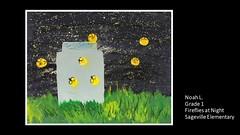 sageville-fireflies-noah