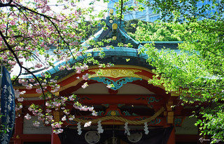Shrine in spring greens