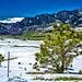 Receding Snow . . #colorado #coloradoinstagram #coloradophotographs #coloradotography #hdr #igdaily #instadaily #instagood #landscape #picoftheday #pretty #snow