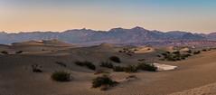Mesquite Flat Sand Dunes Panorama (Morten Kirk) Tags: mortenkirk morten kirk mesquite flat sand dunes death valley california usa 2017 holiday vacation nature desert landscape