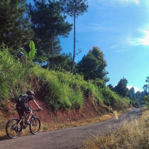 Palintang Long Uphill Climb