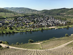 Mosel: Alf - Traben-Trarbach (jc.d the cycling photographer) Tags: deutschland mosel