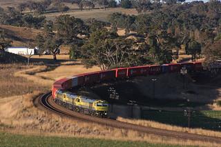 The Paper Train