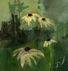 "Echinacea II (""Jimmer"" ( http://jim-vance.pixels.com )) Tags: echinacea flowers garden"