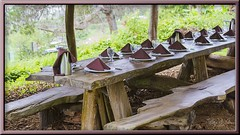 The Table is Set (Sugardxn) Tags: garypentin sugardxn photoshop picswithframes maui hawaii upcountry oofarm chefdanieleskelsen gourmet greens brickoven finedining dining outdoor