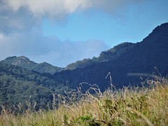 Double Peak and the saddle between Mt.Ballow and Minnages mountain (flashmick) Tags: queensland bushwalk mountains scenicrim burnett border