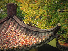 Beautiful autumn colors in Chinese garden, Hefei (Germán Vogel) Tags: asia eastasia china travel traveldestinations traveltourism tourism touristattraction landmark holidaydestination famousplace xiaoyaojin xiaoyaojinpark publicpark gazebo autumn season fallenleaves roof chineseculture chinesegarden chinesearchitecture colorful beautyinnature