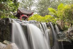 Waterfall (sdmix) Tags: waterfall trees australia sydney chinese building rocks green