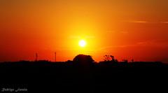 Sunset - Entardecer (Rodrigo Fanaia) Tags: rodrigofanaia sunset fotografia sun landscape panorama entardecer