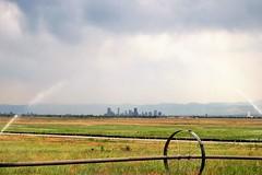 Denver Skyline (Patricia Henschen) Tags: rockymountainarsenal commercecity colorado nationalwildliferefuge urban denver skyline clouds mountains frontrange