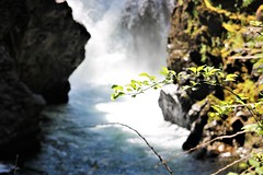 Out of the mists (Jessie T*) Tags: parksvillebc canada littlequalicumfalls provincialparks campgrounds vancouverisland waterfall