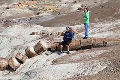 DSC_0264_1378 (thokaty) Tags: petrifiedforest nationalpark arizona petrifiedwood roadtrip holbrook