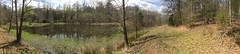River Trail Pond panorama (GoldenEagle754) Tags: shipman nelsoncounty virginia panorama pond appalachians appalachia appalachian marshy freshwater plants green grass brown spring season nature outdoors outside trees branches barren water rivertrail rivertrails