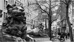 Fontaine de la Vierge surnommée fontaine aux lions, Vinâve d'Ile, Liège, Belgium (claude lina) Tags: claudelina belgium belgique provincedeliège liège