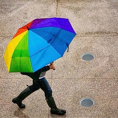 Color on a rainy day. 🌈 ☔️ #pictureduke #dukeuniversity //PC: @megankmendenhall (Duke University) Tags: ifttt instagram duke university