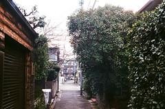 Usually day (yasu19_67) Tags: kodakretinas1 reomar45mmf28 45mm fujifilm superia400 film filmism filmphotography analog atmosphere photooftheday alley sunlight shadow osaka japan