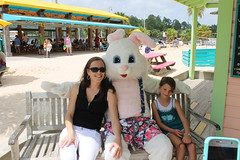 Easter Bunny 146
