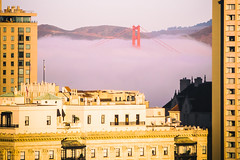My Morning View (Thomas Hawk) Tags: america bayarea california fairmont fairmonthotel goldengatebridge karlthefog sanfrancisco usa unitedstates unitedstatesofamerica westcoast bridge fog us fav10 fav25 fav50