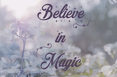 Believe in Magic (Javcon117*) Tags: pastel quote saying believe magic bokeh javcon117 frostphotos pink purple happy inspirational motivate motivational text typography blossom flower inspire sun sunny flare glare