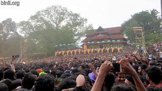 Thrissur Pooram 2017 - 04