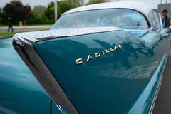 1958 Cadillac Coupe De Ville 2 door coupe DST_1090 (larry_antwerp) Tags: brussel brussels 布鲁塞尔 брюссель ブリュッセル市 بروكسل belgium belgië 比利时 比利時 бельгия ベルギー בלגיה बेल्जियम 벨기에 بلژیک بلجيكا car auto vehicle cadillac coupedeville bruxelles atomium