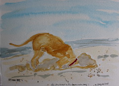 9- A Dog or Cat (cheesemoopsie) Tags: aquarelle watercolor sketch croquis