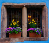 Blue Window (JØN) Tags: nikond700 1735mm 1735mmf28d france riquewihr spring fairytale village flowers vibrant colors travel scenic