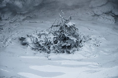 Krafla Area (Theo Crazzolara) Tags: krafla iceland island myvatn mývatn northern north nord víti volcano volcanic vulkan lava caldera grey gray grau hot spring heis water wasser schlamm mud geothermal thermal area clay ton lehm shot natur nature